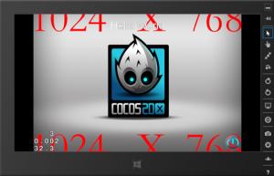 20140105cocos_2